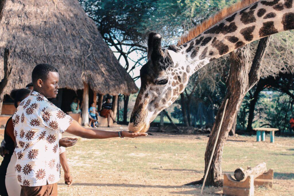 Dix (10) destinations africaines à visiter absolument - Kenya